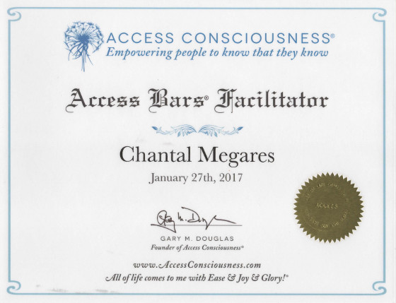 Certificat d'aptitude access bars conciousness